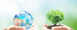 Минприроды создаст единый интегратор экологических сборов.